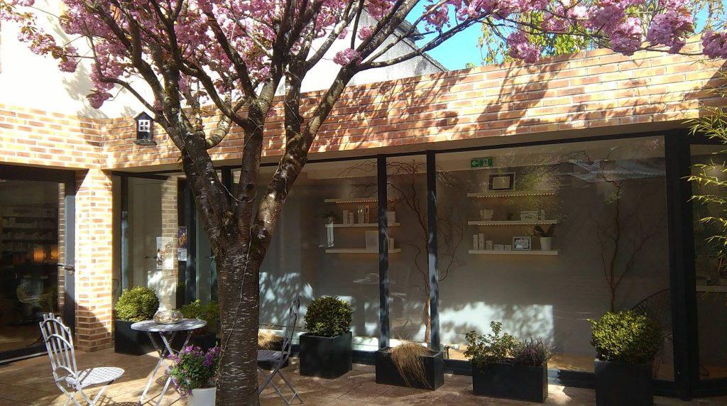 cerisier Japonais Magali Delandre