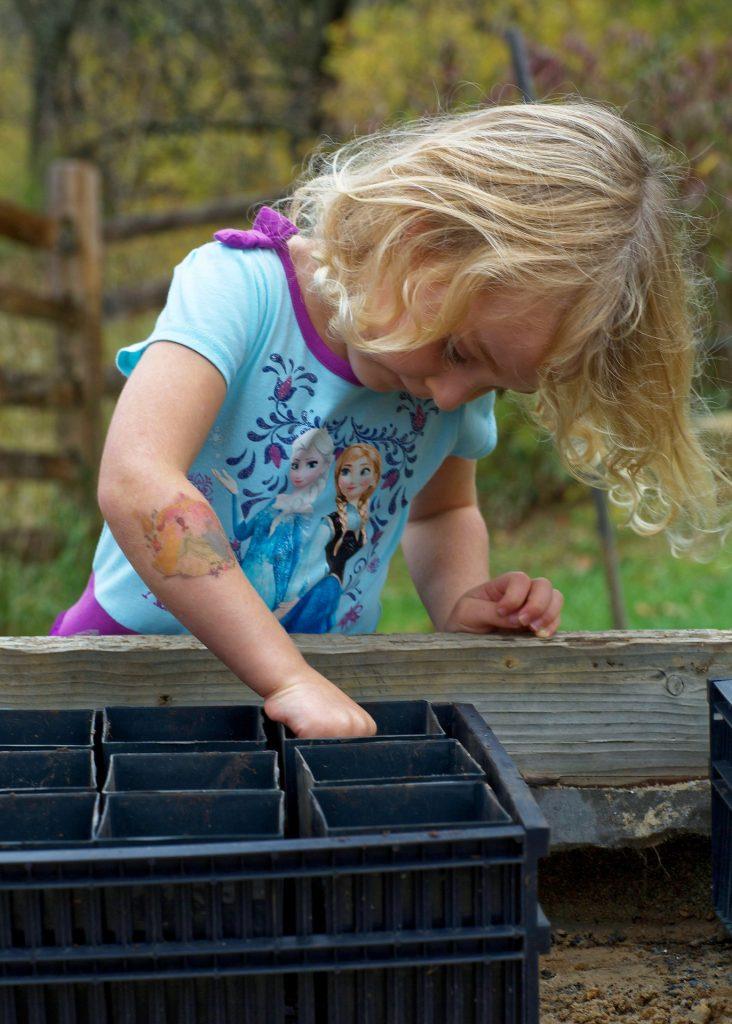jardinage avec les enfants blog Souriez rose