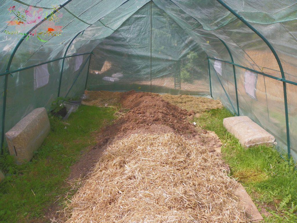 permaculture paille bio blog Souriez rose