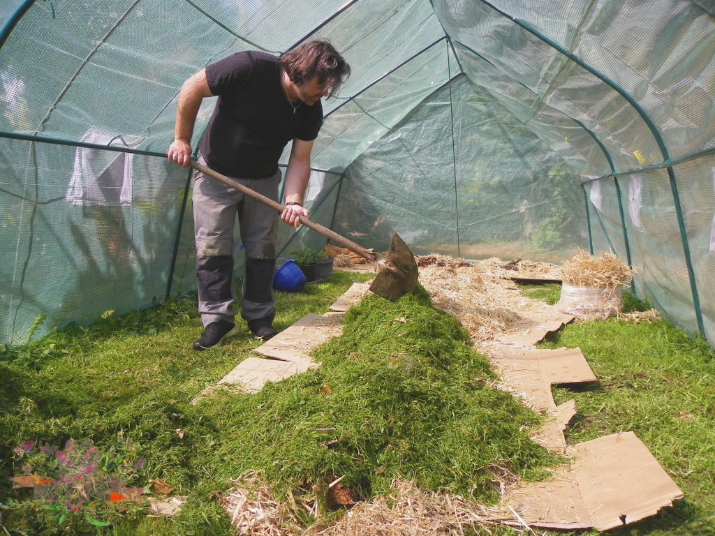 permaculture tonte blog Souriez rose