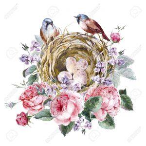 oiseaux nature Souriez rose carte cadeau naturopathie