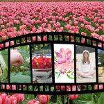 24h avec Pep Souriez rose naturopathie