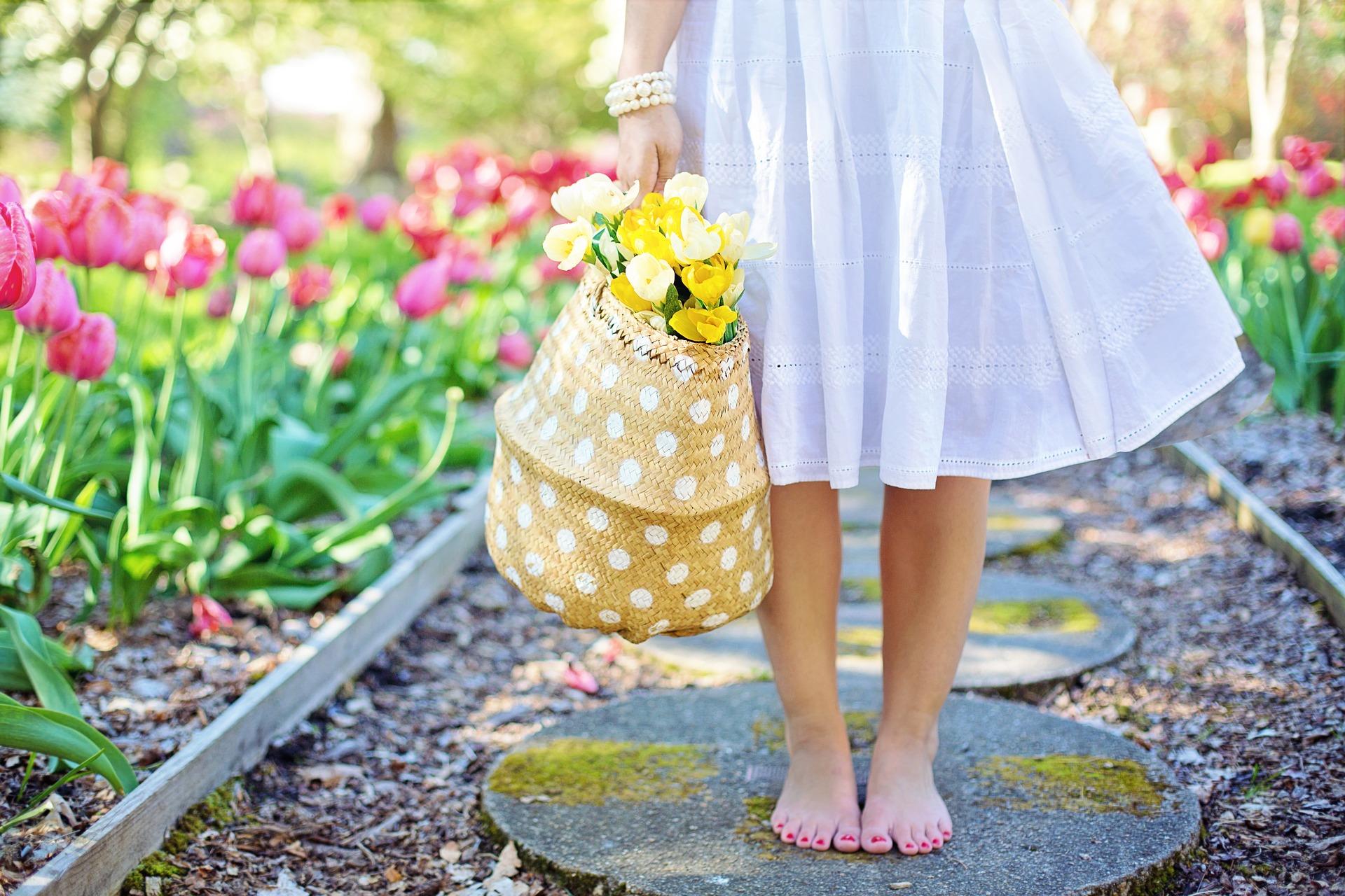 nature fleurs blog souriez rose