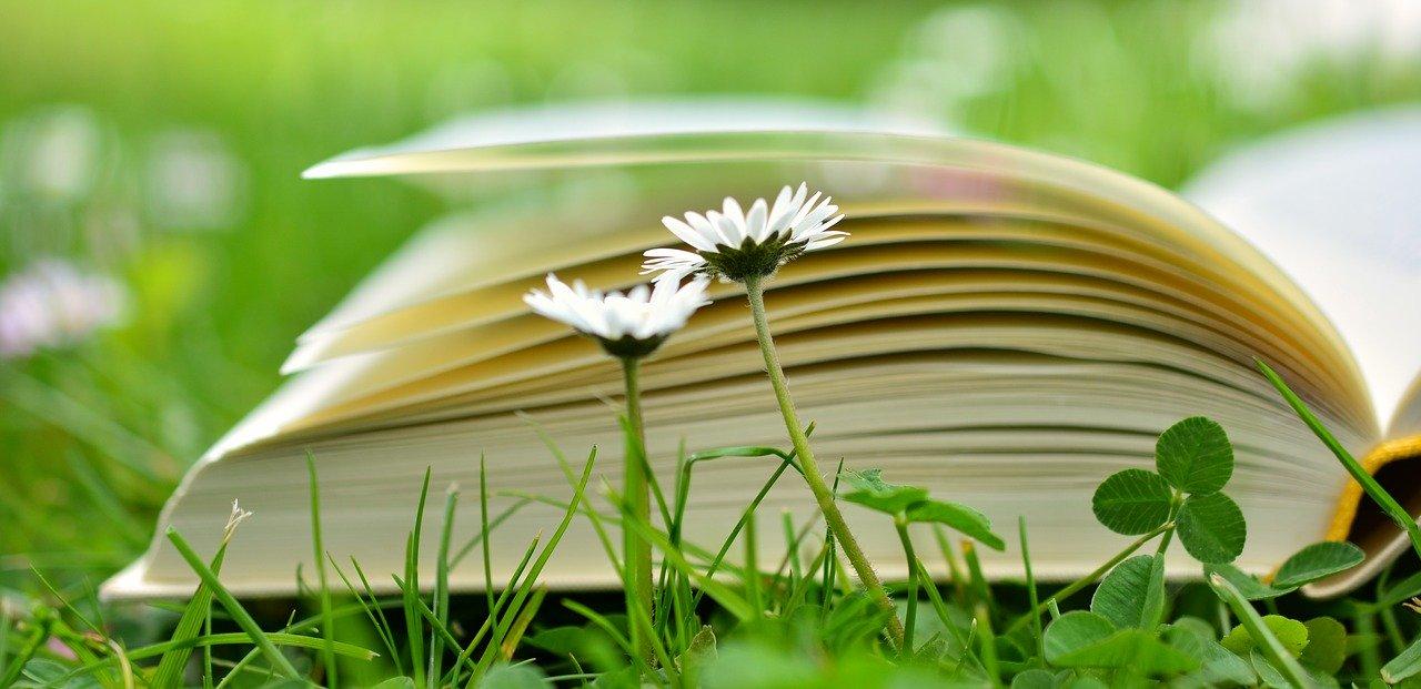 livre Souriez rose naturopathie